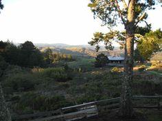 ranch - landscape