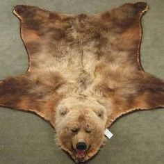 Because It Would Go With My Decor But More So We Could Bear Skin Rugcozy