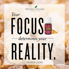 MOTIVATIONAL MONDAY with the Young Living Essential Oils!   What's your focus this week?  A member-favorite blend with a rich, invigorating scent, Brain Power is perfect for inhaling or diffusing to enjoy its uplifting aroma in the home, office, or on the go. Apply Brain Power topically to moisturize the skin and enjoy its inspiring scent. Formulated with Royal Hawaiian Sandalwood, Cedarwood, Frankincense, Melissa, and Blue Cypress oils…