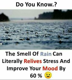 Rain releives stress and improve my mind by I love rain.its amazing True Interesting Facts, Some Amazing Facts, Interesting Facts About World, Intresting Facts, Unbelievable Facts, Awesome Facts, Amazing Things, Wierd Facts, Wow Facts