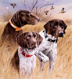 """Great Hunting Dogs"" - German Shorthairs -18"" x 20"" -Artist Proof Edition of 100 -Pointers and setters Pointing Dog Paintings by Jim KillenPaintings by Jim Killen - Pointing Dog Paintings by Jim Killen"