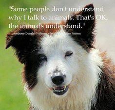 """""""Algunas personas no entienden por qué hablo con los animales. No pasa nada, los animales lo entienden"""". Anthony Douglas Williams"""