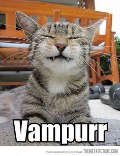 Still a better vampire than Edward Cullen…