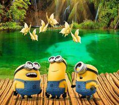 Minions for world domination Syafiqah Minion Rock, Minion 2, Cute Minions, Minion Banana, Minions Despicable Me, Funny Minion, Funny Jokes, Minions Images, Minion Pictures