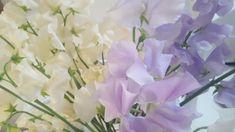 Sweet peas Sweet Peas, Bloom, Flowers, Plants, Plant, Royal Icing Flowers, Flower, Snap Peas, Florals
