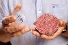 "World's 1st test-tube burger ` Tastes like ""A cross between a Boca Burger and McDonald's"""
