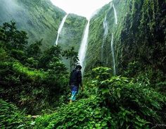 Aloha Friday adventuring with Lucky We Live Hawaii moments at its finest. Aloha Friday, Hawaii Life, Nature Adventure, South Pacific, More Pictures, In This Moment, Island, Lifestyle, Live