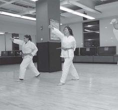 New Karate class beginning this fall!