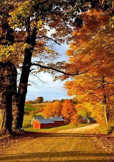 autumn country lanes
