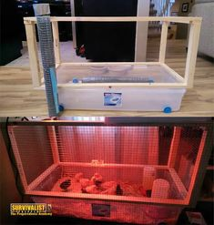Cheap Chicken Coops, Portable Chicken Coop, Best Chicken Coop, Chicken Coop Plans, Building A Chicken Coop, Chicken Runs, Chicken Brooder Box, Chicken Coup, Hatching Chickens
