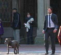 Keanu Reeves avec son pitbull sur le tournage de John Wick 2