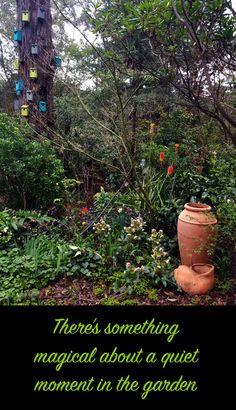 Uplifting spring garden photos, 2020 | Ferny Hill Retreat Holiday Apartments, Quiet Moments, New Growth, Garden Photos, Spring Has Sprung, Romantic Couples, Spring Garden, Emerald, Bloom
