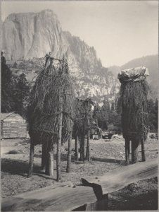 Acorn caches, Yosemite