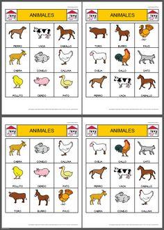 unidad didactica infantil los animales - Buscar con Google                                                                                                                                                     Más
