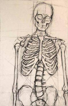 This is a structural analysis of a human skeleton I did in my figure drawing class. drawing human Skeleton by on DeviantArt Anatomy Sketches, Anatomy Drawing, Drawing Sketches, Art Drawings, Drawing Tips, Human Anatomy Art, Pencil Drawings, Drawing Ideas, Sketching