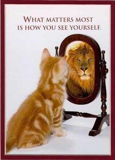 zelfbeeld