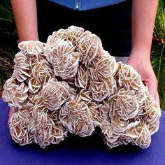 gypsum-sádrovec