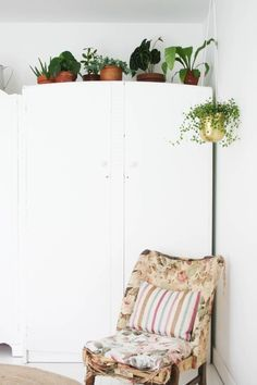 Image result for plants on top of wardrobes