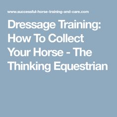 Dressage Training: How To Collect Your Horse - The Thinking Equestrian