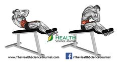 © Sasham | Dreamstime.com - Exercising for bodybuilding. Twisting to turn on the Roman chair