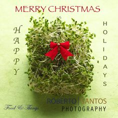 Merry Christmas to all... Happy & Safe Holidays...#robertosantosphotpgraphy