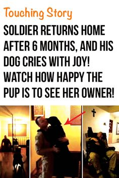 What a wonderful story of the bond between dog and owner! Love this video! #dogs #pets #touching