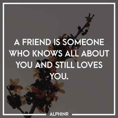 A friend is someone who knows all about you and still l at Alphinr Who Knows, Still Love You, Instagram Story, Quotes, Quotations, Qoutes, Quote, Shut Up Quotes