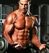 MuscleChamp.de – Fitness Produkte und passendes Equipment