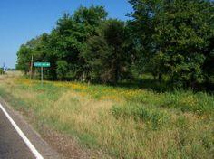 14.26 Acres in Leon County, Texas - Property - LandAndFarm.com - Land for Sale