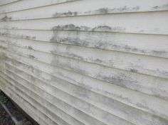 Spring Cleaning Tips: It's Easy to Keep Your Vinyl Siding Looking New!