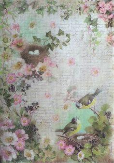 GBP - Rice Paper For Decoupage Decopatch Scrapbook Craft Sheet Birds And Peach Blossom & Garden Peach Flowers, Peach Blossoms, Rice Paper Decoupage, Decoupage Art, Writing Paper, Paper Background, Collage Sheet, Vintage Paper, Vintage Flowers