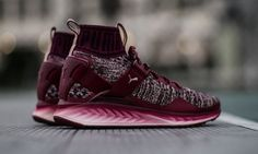 ca1047aac2bd PUMA Ignite EvoKnit 2017 colorways include a burgundy maroon