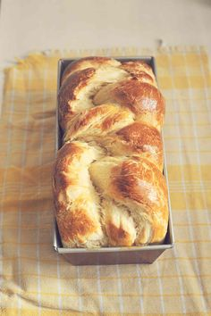Traditional Dishes for a Polish Easter Dinner. easter dinner 8 Traditional Dishes for a Polish Easter Dinner Polish Easter Traditions, Easter Bread Recipe, Babka Recipe, Easter Dinner Recipes, Valentines Dinner Recipes, Polish Recipes, Polish Food, Russian Recipes, Russian Foods