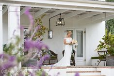 Boschendal Wedding Photos Wedding Venues, Wedding Photos, Wedding Cape, Bride Portrait, Vintage Wine, Poses, Party Guests, Intimate Weddings