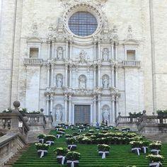 Temps de flors a Girona #girona #descobreixcatalunya #igerscatalunya #catalunyaexperience #gaudeix_cat #clikcat #catalunya #catalonia #igersgirona #catedral #cathedral #flors #flores #flowers #fleurs #cultura #patrimoni #culture #loves_catalunya #mapassionacatalunya by roser0407