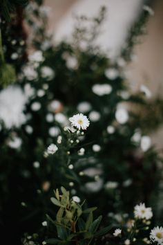 MY WEDDING Christina Bacharaki #wedding #flowers #design #florist #fresh #aster #white  Photo:Artographer Photojournalism https://artographer.gr/
