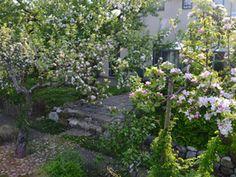 Eva Mathiassons trädgård, Brantevik