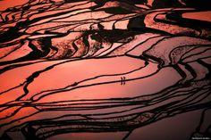 Os terraços de arroz de Yuanyang são um dos patrimônios mundial e da humanidade reconhecidos pela Unesco. Conheça este lugar espetacular http://catr.ac/p565815 #china
