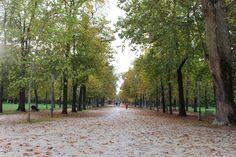 Autumn in Parma