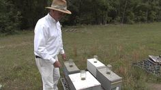 Farmers, and ultimately consumers, depend a great deal on honeybees.  In fact, farmers contract with local apiaries to supply them with hives and bees to make sure their crops have enough bees for pollination. Recently, The Monitor's Mark Wildman visited with one Georgia apiary to see just how the bee population is doing.