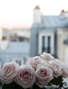 Photographie de Paris, Appartement Paris, Pink Roses sur les toits de Paris balcon, cadeau de Saint Valentin, Montmartre, printemps à Paris, bébé bleu