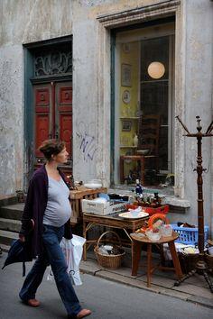 Ikkunalautojen aarteita  http://www.exploras.net/helsingor