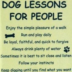 Dog Lessons For People @username