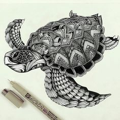 Ornate turtle by @fayehallidayart #love #instagood #photooftheday  _____