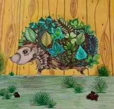 Hedgehog enchanted forest