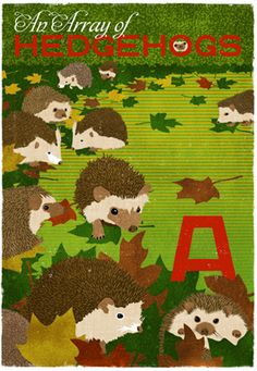 An Array of Hedgehogs! From our new collection