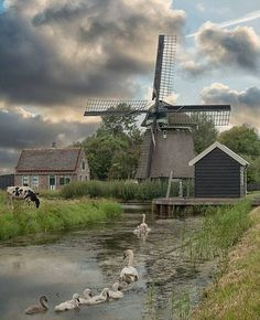 Holland Windmills, Cool Pictures, Beautiful Pictures, Country Scenes, Water Tower, Le Moulin, World Of Color, Covered Bridges, Great Shots