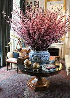 Centered round table above a beat up Persian rug, long dark emerald drapes, hints of brass and tartan, and those fabulous cherry blossoms in that giant blue and white planter.