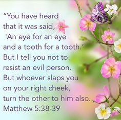 """Matthew 5:38-39 is talking to the""""little flock"""",Not the Body of Christ] ⭐️Paul our Apostle writes:""""Recompense to no man evil for evil. Provide things honest in the sight of all men. If it be possible,as much as lieth in you,live peaceably with all men.Dearly beloved,avenge not yourselves,but rather give place unto wrath: for it is written, Vengeance is mine;I will repay,saith the Lord. Romans 12:17-19"""