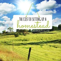 The Cost of Homesteading - While homesteading can be very tiring at times, the satisfaction we feel at the end of the day is priceless. http://oursimplelife-sc.com #homestead #homesteading